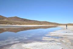 Turister på Uyunien saltar lägenheter som torkas upp den salta sjön i Altiplano Arkivbild