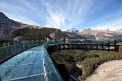 Turister på glaciären Skywalk Arkivfoto
