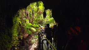 Turister skriver in Thurston Lava Tube i Hawaii Volcanoesnation Arkivfoto