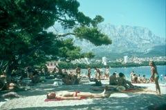 Turister som badar på Krka vattenfall, Kroatien Arkivfoton