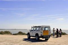 Turister som besöker Camarguen 4x4 Royaltyfri Fotografi