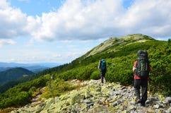 Turister som fotvandrar i de Carpathian bergen. Arkivfoto
