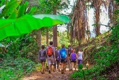 Turister som fotvandrar i den djupa djungeln av den Khao Yai nationalparken i Thailand Arkivfoton