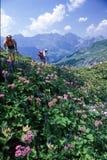 Turister som fotvandrar på bergen av Engelberg på de schweiziska fjällängarna Arkivfoton
