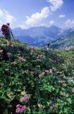 Turister som fotvandrar på bergen av Engelberg på de schweiziska fjällängarna Royaltyfria Bilder
