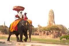 Turister som längs vägen rider på elefant fotografering för bildbyråer
