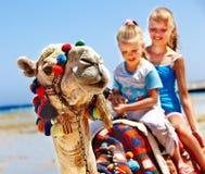 Turister som rider kamlet på stranden av Egypten. Royaltyfria Bilder