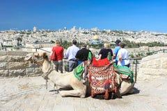 Turister som ser kupolen av vagga i Jerusalem Royaltyfria Foton