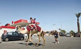 Turister som tar en kamelritt Royaltyfri Bild