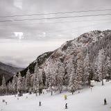 Turister som tycker om vintersportar i de rumänska Carpathiansna Royaltyfria Bilder