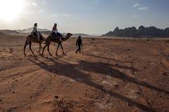 Turister ställde in av i den sena eftermiddagen för en kamelritt till och med Wadi Rum i Jordanien Arkivfoton