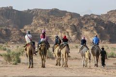 Turister ställde in av i den sena eftermiddagen för en kamelritt till och med Wadi Rum i Jordanien Royaltyfri Bild