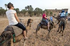 Turister startar deras kamelritt in i erget Chebbi på Merzouga i Marocko Arkivfoton