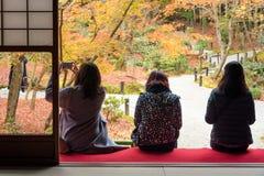 Turister tycker om att hålla ögonen på lönnlövet i zen att arbeta i trädgården Royaltyfria Foton