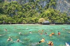 Turister tycker om med att snorkla i ett tropiskt hav på den Phi Phi islaen Fotografering för Bildbyråer