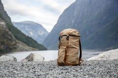 Turister vandrar Norvegian fjordar på bakgrunden arkivbilder