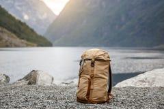 Turister vandrar Norvegian fjordar på bakgrunden royaltyfri foto