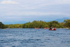 Turistflottar längs bergfloden royaltyfri foto