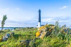 Turisti al faro di Sõrve dal Mar Baltico Fotografia Stock Libera da Diritti