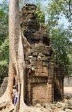 Turisti all'albero di banyan, Angkor Immagini Stock Libere da Diritti