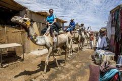 Turisti a bordo dei cammelli nel villaggio di Nubian di abito-Sohel nella regione di Assuan di Egitto fotografie stock libere da diritti