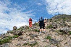 Turisti che camminano in Altay Mountains, Russia Immagini Stock Libere da Diritti
