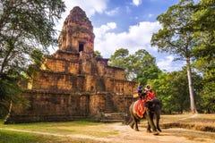 Turisti che guidano elefante a Angkor, Siem Reap, Cambogia Fotografie Stock