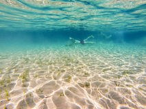 Turisti che nuotano underwater Fotografia Stock