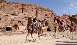 Turisti che visitano le rovine antiche di PETRA sui cammelli, Giordania Fotografia Stock