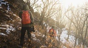 Turisti nella foresta di inverno Immagini Stock Libere da Diritti