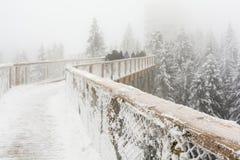 Turisti nella nebbia sulla passeggiata Bachledka della cima d'albero Immagini Stock