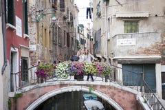 Turisti a Ponte de la Chiesa, Venezia, Italia fotografia stock libera da diritti