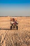 Turisti principali di Beduins sui cammelli al breve giro turistico intorno Immagini Stock