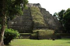 Turisti in rovine del tempio maya a Yaxha, Guatemala Immagine Stock
