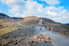 Turisti sull'escursione del viaggio fotografia stock libera da diritti