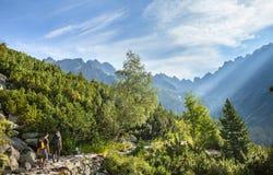 Turisti sulla traccia di montagna in alte montagne di Tatra Fotografia Stock Libera da Diritti