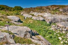 Turisti sulla traccia lungo l'isola Hitra di Trondelag della costa La linea costiera norvegese del Mare del Nord Immagine Stock