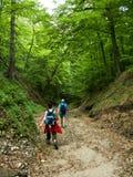 Turisti in valle della montagna Fotografia Stock