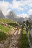 Turistic way in dolomite Royalty Free Stock Photography