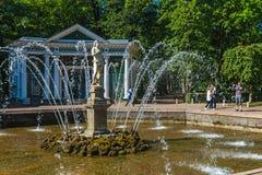 Turists от фонтанов в Peterhof Стоковое Фото