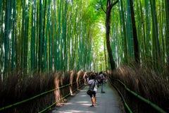 TuristS in Arashiyama Bambo Stock Foto