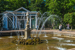 Turists od fontann w Peterhof Zdjęcie Stock