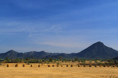 Turkana desert (Kenya) Stock Images