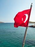 Turken sjunker Royaltyfri Fotografi