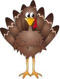 Turkey. Illustration of brown turkey cartoon Royalty Free Stock Photography
