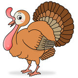 Turkey Royalty Free Stock Photography
