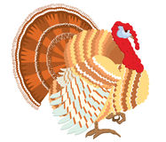 Turkey. Stock Photo