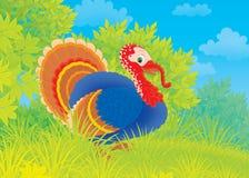 Free Turkey Stock Photography - 28160722