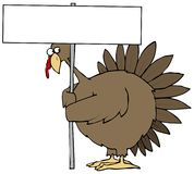 Turkey. This illustration depicts a turkey peeking from behind a blank sign Royalty Free Stock Photos