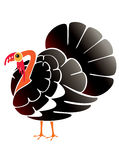 Turkey, abstract Royalty Free Stock Image